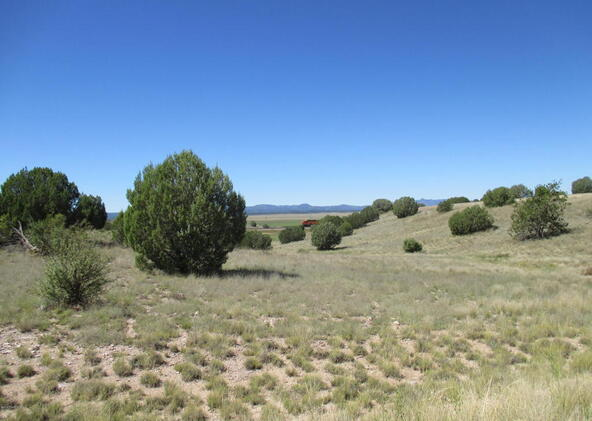 8451 W. Dillon Wash Rd., Prescott, AZ 86305 Photo 12