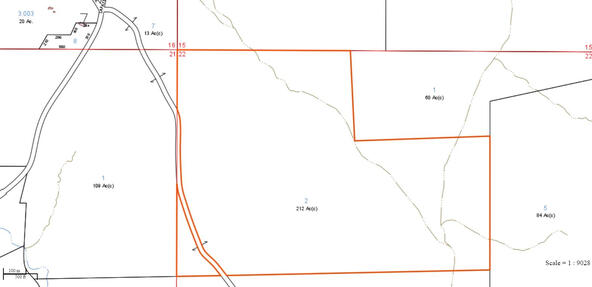 466 +/- Acres Co Rd. 176 & 178, Five Points, AL 36855 Photo 48
