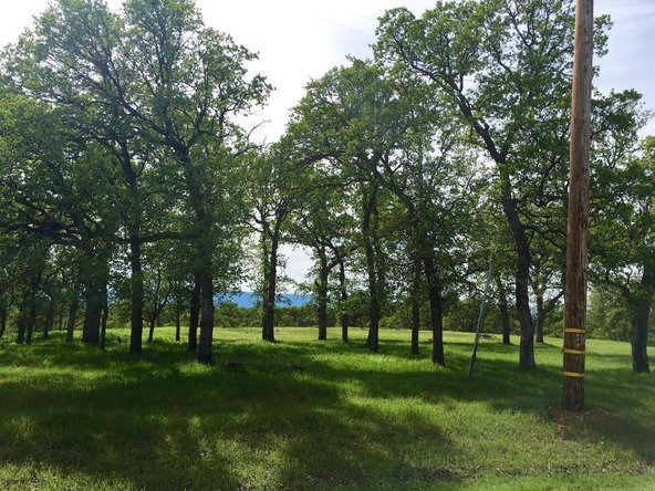 4.21 Ac Norbus Rd., Red Bluff, CA 96080 Photo 8