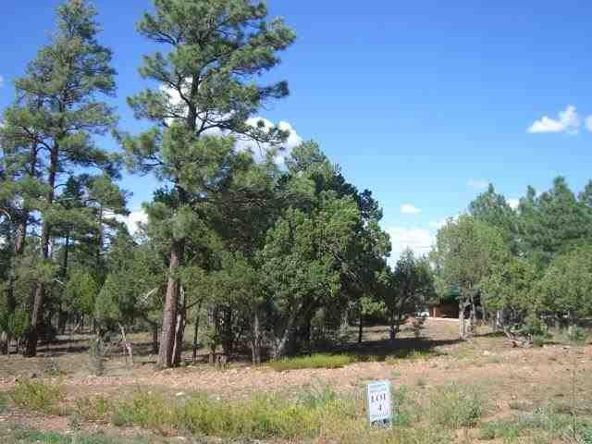 1460 N. Hidden Hollow Ln., Show Low, AZ 85901 Photo 2