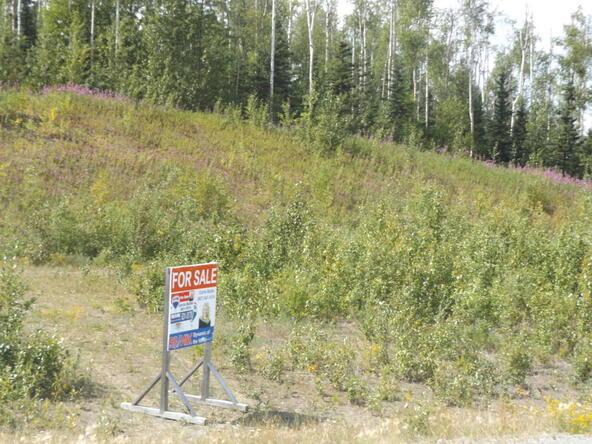 7912 E. Matanuska Spur Rd., Wasilla, AK 99645 Photo 31