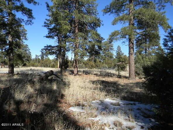 2000 Sunset Trail, Overgaard, AZ 85933 Photo 1