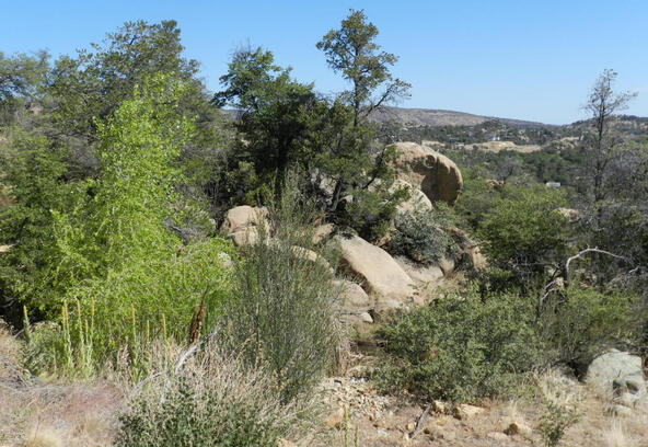 1416 Ridgewood Dr., Prescott, AZ 86305 Photo 7