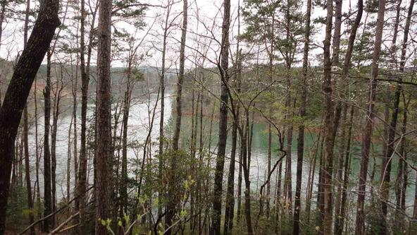 Lot 92 Keowee Key 4 Forecastle Way, Salem, SC 29676 Photo 2