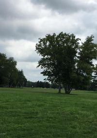 Home for sale: 8 Pine Lakes Estates, Corbin Dr., Energy, IL 62933