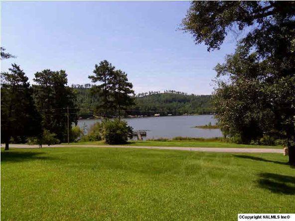 1120 County Rd. 165, Cedar Bluff, AL 35959 Photo 21