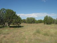 Home for sale: Lot 187 Pinon Springs, Magdalena, NM 87825