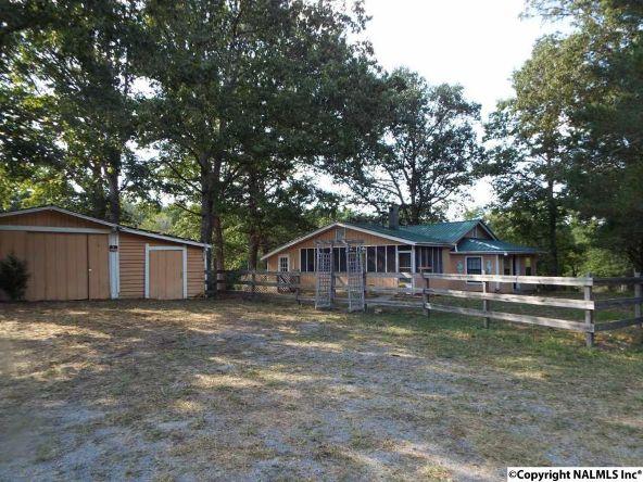 1654 County Rd. 641, Mentone, AL 35984 Photo 5