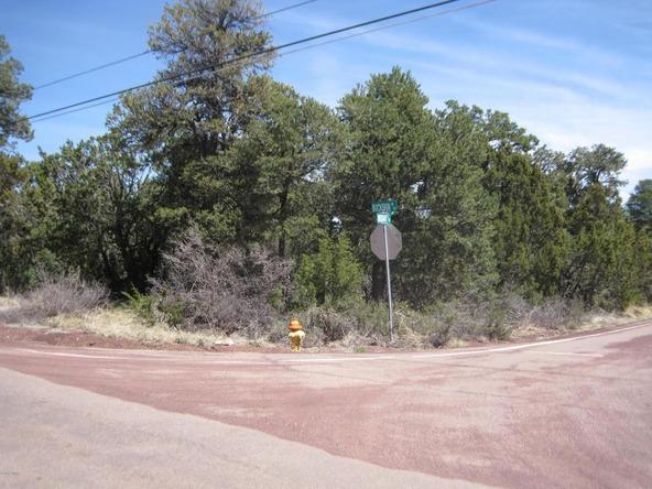 2901 Buckskin Rd., Overgaard, AZ 85933 Photo 5