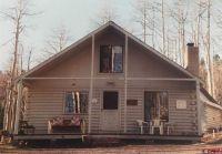 Home for sale: 55 Beaver, Cimarron, CO 81220