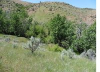 Home for sale: Lot #10 Shoemaker, Horseshoe Bend, ID 83629