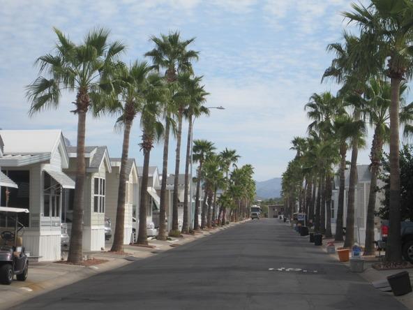 3710 S. Goldfield Rd., # 551, Apache Junction, AZ 85119 Photo 4