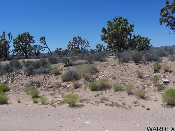 26865 N. Verde Rd., Meadview, AZ 86444 Photo 9