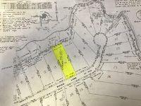Home for sale: 0 Nicole Ln., Pickford, MI 49774