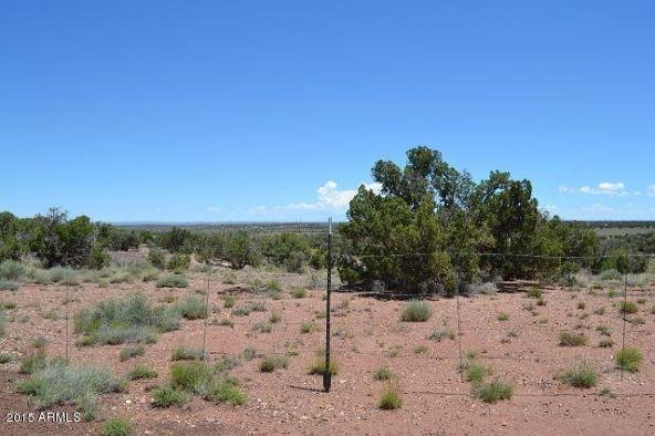 9550 Charolais Trail, Snowflake, AZ 85937 Photo 31