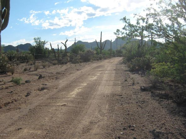 12229 W. Fort Lowell, Tucson, AZ 85743 Photo 6