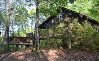 Home for sale: 449 Bushy Head Rd., Cherry Log, GA 30522