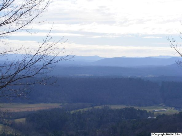 9416 County Rd. 103, Mentone, AL 35984 Photo 1