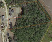 Home for sale: 166 Ward Loop, Hemingway, SC 29554