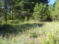 Home for sale: Tbd Snowberry Ln. Lot 11, Plummer, ID 83851