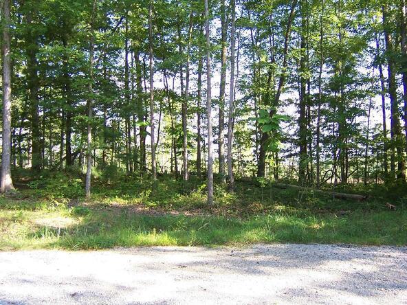 556 Blazing Saddle Dr., Jamestown, TN 38556 Photo 5
