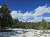 Home for sale: Lot 2 Buckhorn Mt Est Dr., Custer, SD 57730