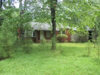 Home for sale: 294 Pleasant Hill Rd., Chidester, AR 71726