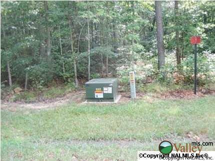 1 County Rd. 935, Mentone, AL 35984 Photo 2