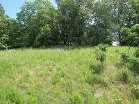 Home for sale: Tbd Carlton Rd., Hollister, MO 65672