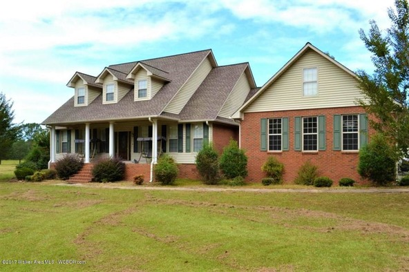 2946 Al-124, Townley, AL 35587 Photo 41