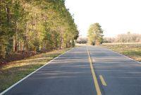 Home for sale: Tbd County Rd. 625, New Brockton, AL 36351