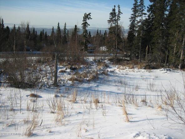 L14 B6 Manorwood Pointe Cir., Anchorage, AK 99516 Photo 5