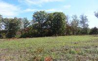 Home for sale: Lt 8 Brookwood Hills, Blairsville, GA 30512