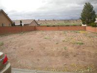 Home for sale: 3423 E. Park Pl., Littlefield, AZ 86432