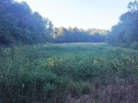 Home for sale: 14 R Mann Rd., Jamestown, KY 42629