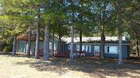 Home for sale: 16124 Abnacki Ln., Ocqueoc, MI 49759