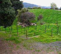 Home for sale: 16391 Aztec Ridge Dr., Los Gatos, CA 95030