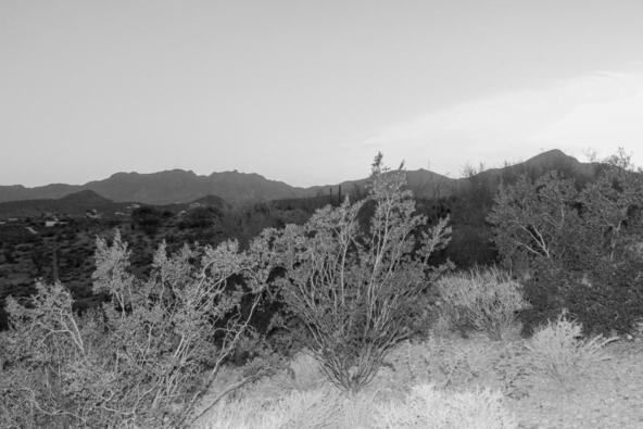 5810 N. Abington, Tucson, AZ 85743 Photo 6
