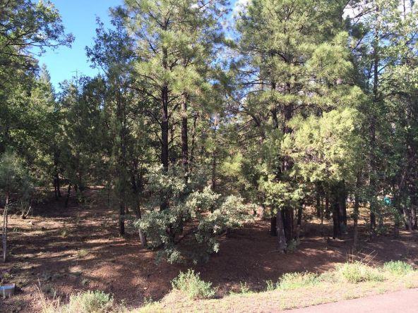 4826 Blue Spruce Ln., Lakeside, AZ 85929 Photo 3