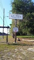 Home for sale: 18505 N. Us Hwy. 441, Reddick, FL 32686
