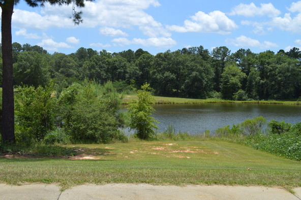 404 Turtleback Trail, Enterprise, AL 36330 Photo 50