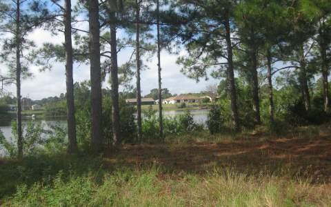 704 Lake Betty Dr., Lake Placid, FL 33852 Photo 10
