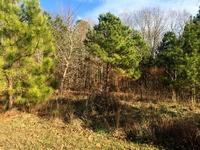 Home for sale: 6009 New Wilkinson Way, Williamsburg, VA 23188