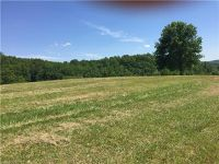 Home for sale: Lot 9 Mckinley Dr., Hendersonville, NC 28792