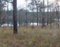 Home for sale: Lot #15 Bartow Saunders Cir., Donalsonville, GA 39845