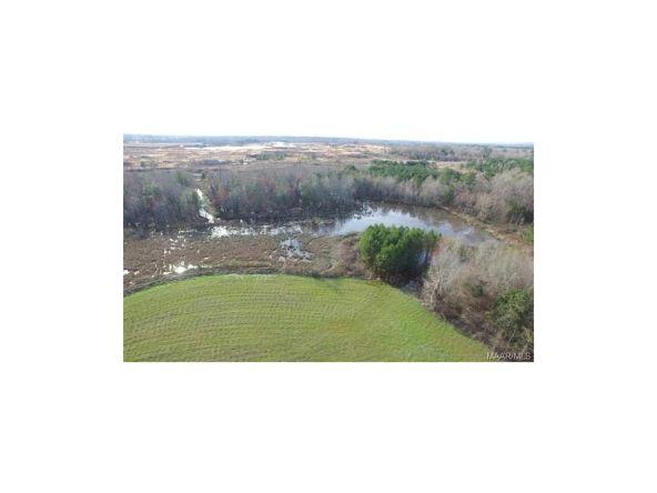 279 Tiger Oak Dr. Rd., Pike Road, AL 36064 Photo 23