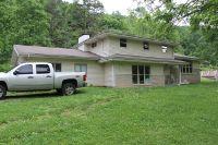 Home for sale: 60 Deer Creek Trail, Martin, KY 41649