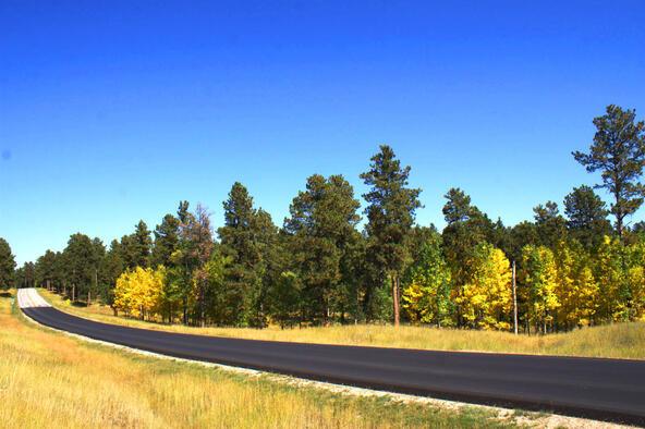 Lot 5, Powder House Trail, Lead, SD 57754 Photo 22