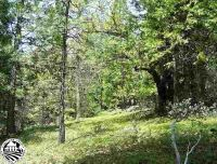 Home for sale: 25725 Lyons Dam, Twain Harte, CA 95383