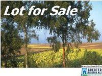 Home for sale: 1961 Rocky Brook Dr., Vestavia Hills, AL 35243